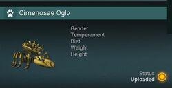 Cimenosae Oglo - NA.jpg