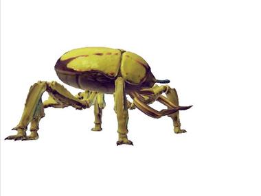 Species novolvei sajudges exotic.png