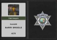 Briddle badge