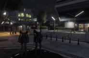Bunny Maids stake out MRPD