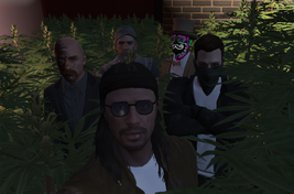 Jesus, Siz, Huck, Julio and Fred on thw Weed Forest.png