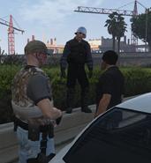 Hawk Security at Work