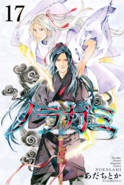 Noragami Volume Cover - 17