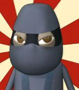 NinjaNevenyttig