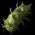 Torment Item Icon 186.png