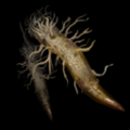 Torment Item Icon 204.png