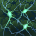 Torment Ability Icon 138.png