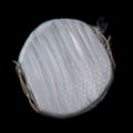 Torment Item Icon 154.png