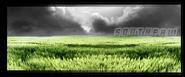Dark Meadow Sig