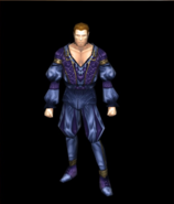 Noble's tunic