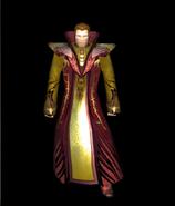 Wizard's robe