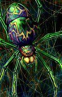giant spider portrait