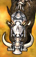 dire boar portrait
