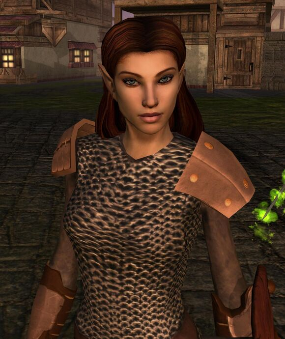 Elanee in the Docks District of Neverwinter