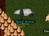Summon Spirit Animal