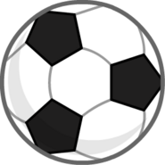 Soccer Ball Body ZOMG