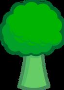 Broccoli Body ZOMG