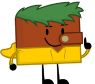 Wallet with Yellow Hoodie and Green Hair