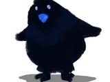 Black Star Penguins