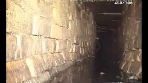 Unidentified humanoid sewer creature CAUGHT ON TAPE
