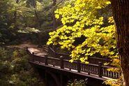 3416 Seven Bridges