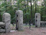 Spider Gates