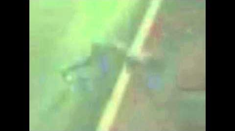 Strange humanoid creature caught on video crossing highway