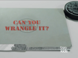Can You Wrangle It?