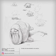 Fleech Anatomy