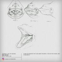 Sea Rex Concept At 3