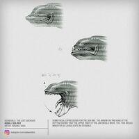 Sea Rex Facial Expressions