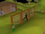 375px-Gnome Stronghold Agility Course (6)