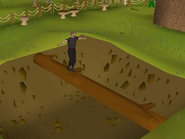 375px-Gnome Stronghold Agility Course (1)