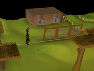 375px-Gnome Stronghold Agility Course (4)