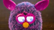 FurbyCrazy.jpg