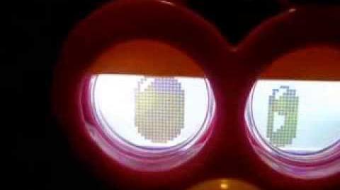 Furby Felicity Crazy