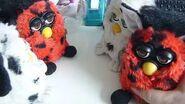 Furby O-bay , Toh-loo-kah , Toh-loo-kah and U-tai