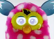 FurbyBoom8.png