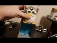 Japanese Talking Palm-Sized Furby