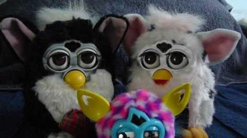 Furdy and Furdy
