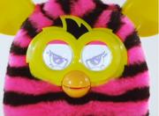 FurbyBoom7.png
