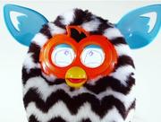 FurbyBoom4.png