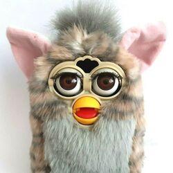 Gray Furbys