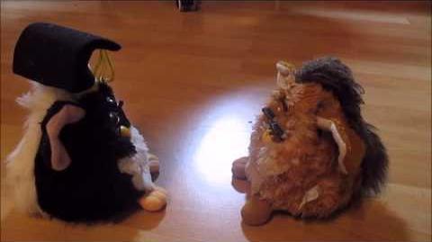 My 2 Furbys talk together