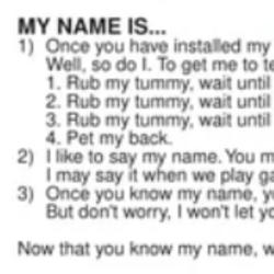 Furby (1998)/Names