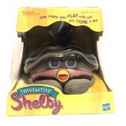 Shelbybox
