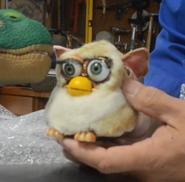 Furbyprototypeimage4