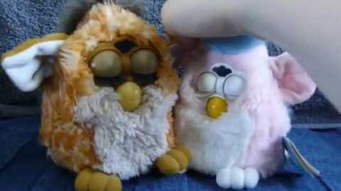 A video of a Giraffe Furby and German furby baby by Anush Yaranushian