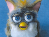 Historical:Furby Bugs