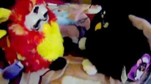 Rusty furby (series 8th) from Mexico and Black furby from Australia talking.